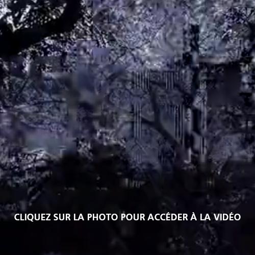 saimer-image-vimeo